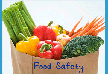ISO 22000 Food Safety Certification Consultants Consultancy